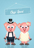 Wedding of pigs Royalty Free Stock Images