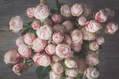 Wedding pink roses bouquet retro style Royalty Free Stock Image