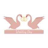 Wedding pink swans hold rings over white Stock Image