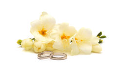 Wedding platinum ring and tender flowers. Two wedding  rings of platinum and tender flowers  on a white background Royalty Free Stock Photography