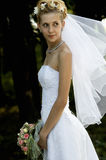 Wedding portrait Royalty Free Stock Photo