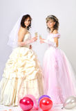 Wedding portrait. Portrait of the brides in a white dress with a diadem in hair in studio royalty free stock photo