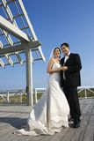 Wedding portrait. royalty free stock photos