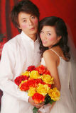 Wedding portrait. On a Red background Royalty Free Stock Photos