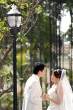 Wedding portrait Stock Photography