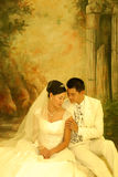 Wedding portrait. A series of wedding pictures Royalty Free Stock Photo