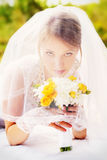 Wedding, portrait of a beautiful bride under veil Stock Image