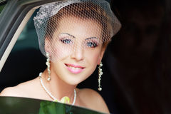Wedding portrait Royalty Free Stock Photography