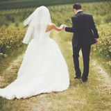 Wedding portrait of a young couple Royalty Free Stock Photography