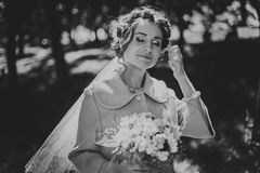 Wedding Portraits Royalty Free Stock Image