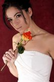 Wedding preparation. Pretty bride holding a rose preparing for her wedding royalty free stock photography