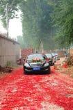 Wedding procession Stock Photography