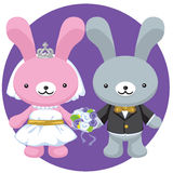 Wedding Rabbit Stock Photography
