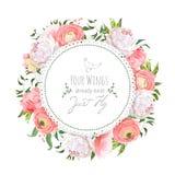 Wedding ranunculus, peony, rose, carnation, green plants round v Stock Images