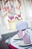 Wedding Reception. Royalty Free Stock Photography