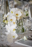 Wedding reception with floral arrangement of white orchids.  Stock Image