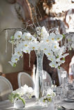 Wedding reception with floral arrangement of white orchids.  Royalty Free Stock Photo