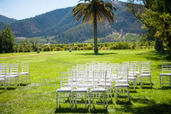 Wedding reception in nature Stock Photos