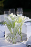 Wedding Reception. Outdoor. Stock Images