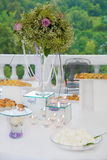 Wedding reception outdoor Royalty Free Stock Images