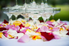 Wedding reception overview. Beautiful wedding champagne tower detail Stock Photography