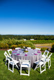 Wedding Reception Table Details Royalty Free Stock Image