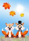 Wedding of red fox. Illustration of red fox cartoon Royalty Free Stock Photo