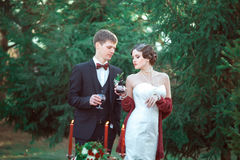 A wedding in retro style Royalty Free Stock Photography