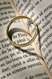 Wedding ring. A wedding ring in detail on a bible Royalty Free Stock Images