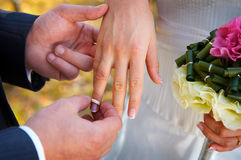 A wedding-ring Royalty Free Stock Photo