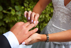 A wedding-ring. The groom inserting a ring into the bride's finger Stock Photos