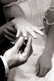 Wedding ring. Commitment golden wedding ring by groom Stock Photo