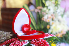 Wedding ring. In the red box royalty free stock photography