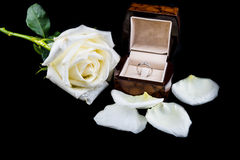 Wedding ring in box with white rose flower on black background Stock Photo