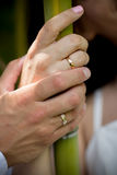 Wedding ring on couples hand Stock Photography