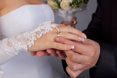 Wedding ring exchange Stock Image
