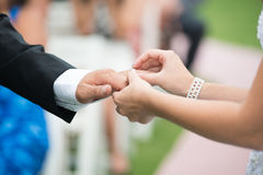Wedding ring exchange Royalty Free Stock Photo
