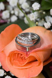 Wedding Ring on Flowers. Wedding Rings (engagement ring, Bride's Ring and Grooms Band) sitting atop a peach colored rose.  Narrow depth of field Royalty Free Stock Photography
