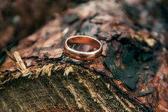 Wedding ring. On the fresh cutted wood Royalty Free Stock Images