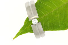 Wedding ring on green leaf Stock Photo