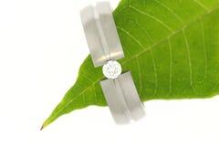 Wedding ring on green leaf Stock Photo