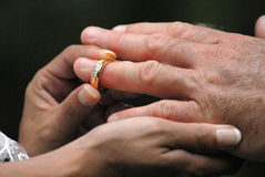 Wedding Ring Hands. Couple getting married, wedding hands with ring Stock Photography