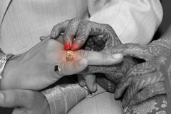Wedding ring for him Stock Photos