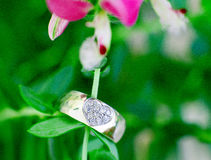 Wedding ring macro Stock Photography