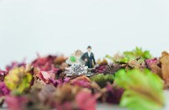 Wedding ring and the miniature. Couple & x28;selective focus& x29 Royalty Free Stock Images