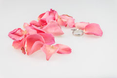 Wedding ring with  pink rose petal on white background Stock Image