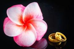Wedding ring with Plumeria flower on white bakcground Stock Photo