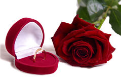 Wedding ring and rose Royalty Free Stock Photo
