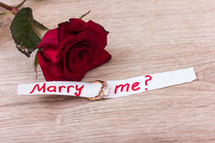 Wedding Ring and Rose Royalty Free Stock Photos