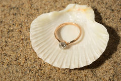 Wedding ring in a shell Stock Photo